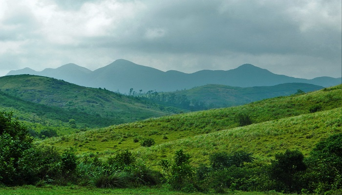 Vagamon_Tour_package